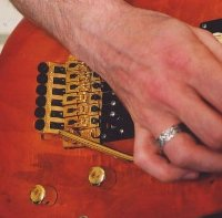 The Tremolo or Whammy Bar